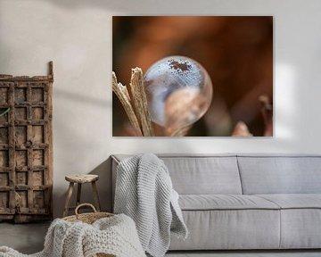 Frozen bubble van Lex Schulte