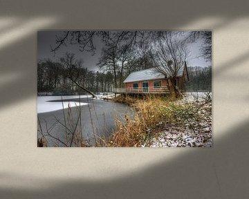 Winter van Jaap Voets