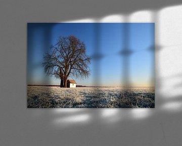 Kapel in bevroren Limburgs Landschap van Maarten Honinx