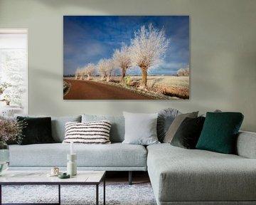 de Hollandse polder in de winter van eric van der eijk