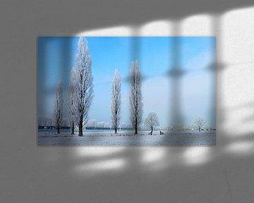 Berijpt landschap van M de Vos