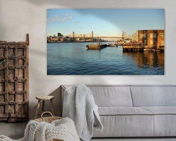 'Roosevelt bridge', New York  van Martine Joanne