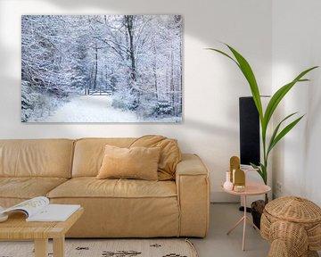 De Ugchelse Berg-Het Leest in de sneeuw#3 van DuFrank Images