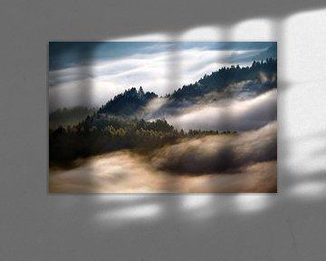 Pieniny morning fog von Wojciech Kruczynski