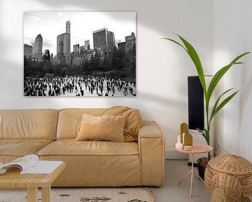 'Central Park', New York  van Martine Joanne