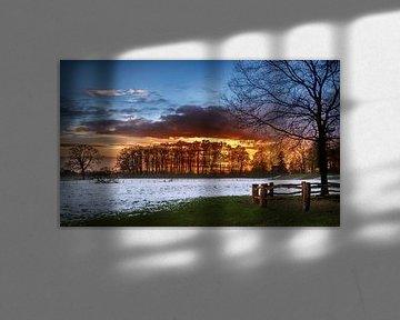Zonsondergang achter de bomen in een winters landschap