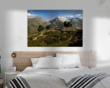 Het prachtige gebergte in Zwitserland ( bettmeralp )