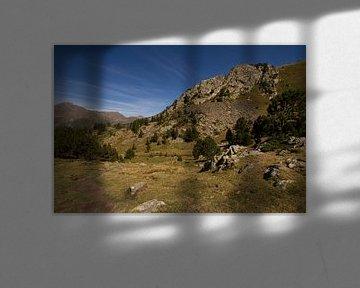Zomer in de berglandschappen van de Pyreneeën