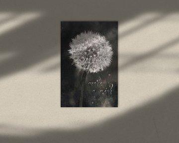 Make a wish - paardebloem met tekst van Heleen van de Ven