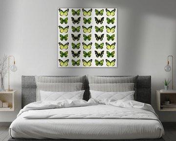 En Garde les Papillons Farcis!! sur Marijke Mulder