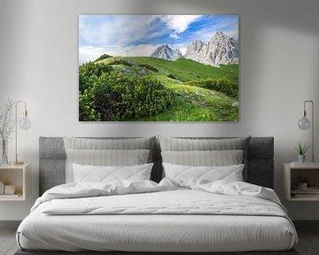 """Berglandschap """"Op naar de bergtop"""" van Coen Weesjes"""