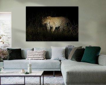 Luipaard van Robert van Brug