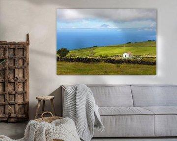 Azoren landbouwgrond van Jan Brons