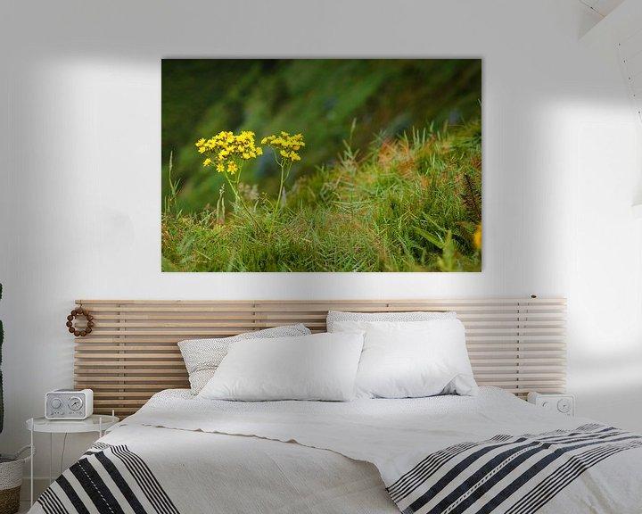 Impression: Blumen am Rande einer Klippe sur Jan Brons