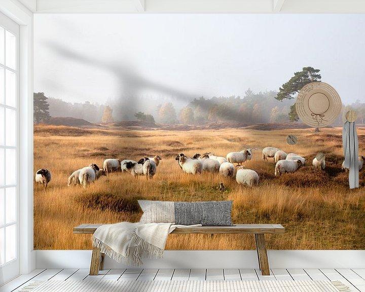 Beispiel fototapete: schapen op de hei von anton havelaar