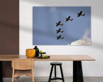 5 flew over the ...... von Arnold de Gans