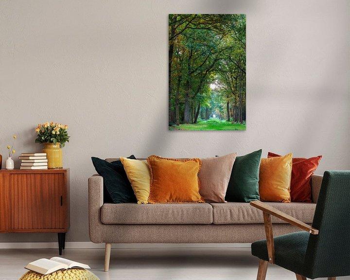 Impression: Pad in het bos sur Ron Buist