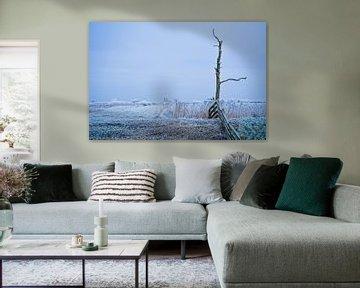 Winter landschap Leeuwarden (Friesland)  van Scarlett Bus