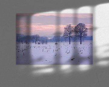Een mistige winteravond van Gisela Scheffbuch