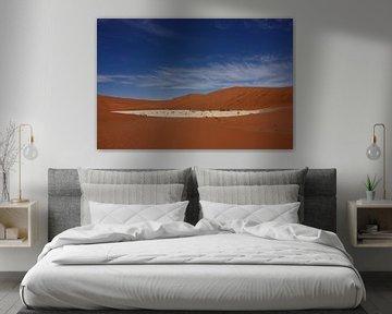 NAMIBIA ... Deadvlei pan sur Meleah Fotografie