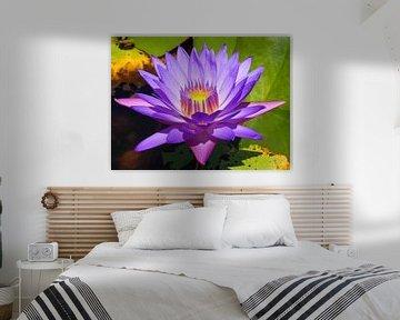 Paarse lotusbloem met licht in de kern van Mireille Zoet