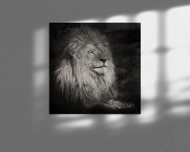 Sfeerimpressie: Lachende leeuw van Ellen van Schravendijk