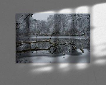 Winters landschap sur Remco Swiers