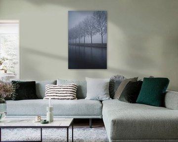 Rij met bomen in de mist  van Remco Swiers