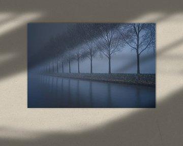 Spookachtige rij met bomen van Remco Swiers