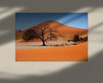 NAMIBIA ... Namib Desert Tree II van Meleah Fotografie