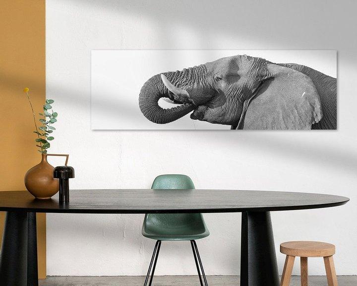 Sfeerimpressie: Drinkende olifant en profiel van Ellen van Schravendijk