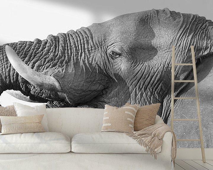 Sfeerimpressie behang: Drinkende olifant en profiel van Ellen van Schravendijk
