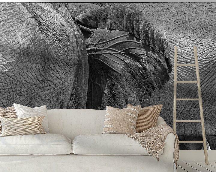 Sfeerimpressie behang: Olifantenoor van Ellen van Schravendijk