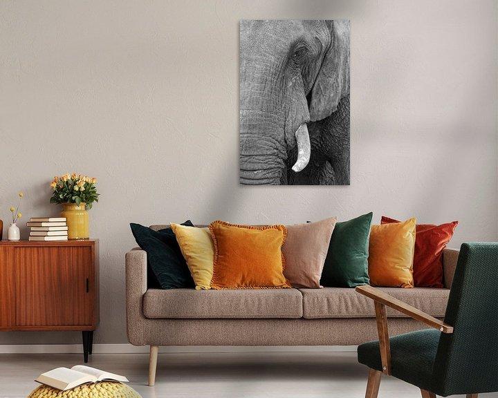 Sfeerimpressie: Olifantenoog van Ellen van Schravendijk