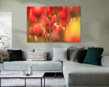 Forrest of tulips van Marcel van Rijn