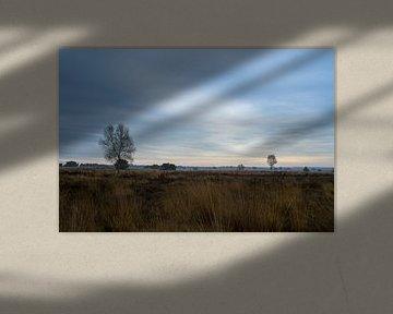 zons opgang op de veluwe van mick agterberg