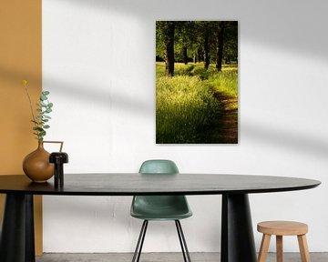 Kronkel tussen de bomen door van Gerjo Radema