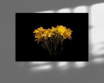 A flower in the dark von wouter De Prins