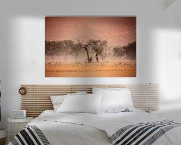 NAMIBIA ... through the storm I van Meleah Fotografie