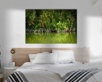 Kleuren van de mangrove - Biesbosch van Ricardo Bouman