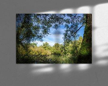 Uitzicht vanuit de Biesbosch van Ricardo Bouman