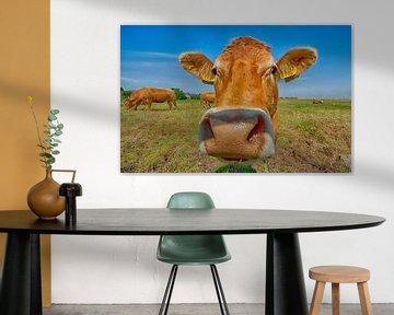 Nieuwsgierige koe van Peter Bartelings Photography