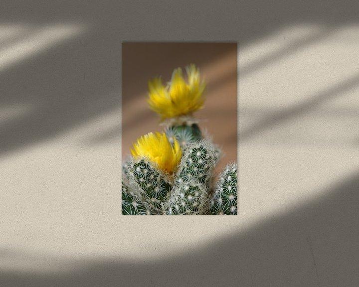Beispiel: Kleiner Kaktus von Klaus-Dieter Schulze