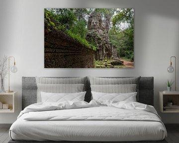 Ta Prohm, Angkor Wat van Richard van der Woude