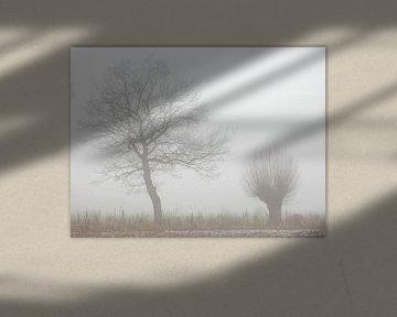 bomen in de mist van Joke te Grotenhuis