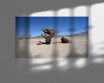 'Door de eeuwen', Bolivia van Martine Joanne