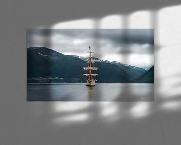Europa in Fjord van Sander Witsenburg