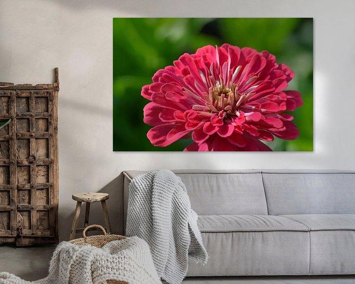 Sfeerimpressie: Close-up van een bloem van Atelier Liesjes