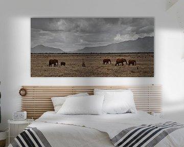 olifanten in afrika van Fulltime Travels