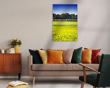 Mosterdzaad veld veld met een rij bomen en maïs van Jan Brons